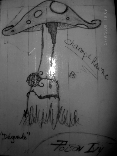 http://champi-haine.cowblog.fr/images/divers/photos/champi12.jpg