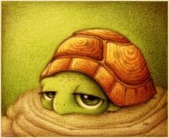 http://champi-haine.cowblog.fr/images/divers/turtle2.jpg